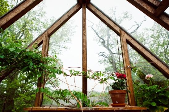 växthus fantastic frank