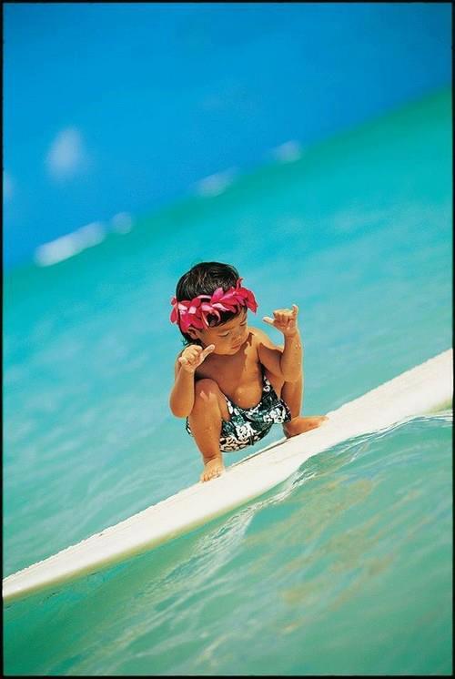 surf Fantastic Frank