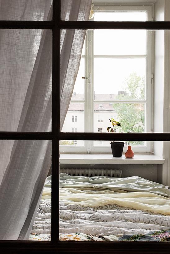 Fantastic-Frank-window-bed