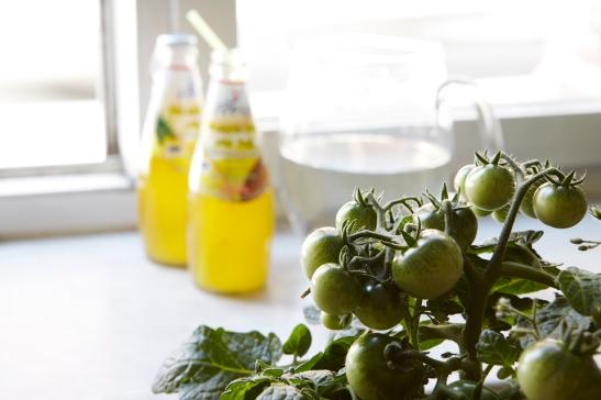 Gröna Tomater Malmskillnadsgatan