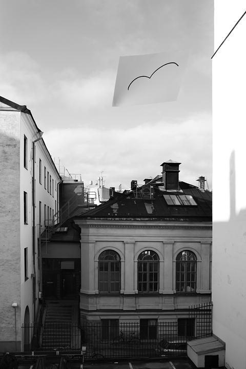 Utsikt med fåglar St Göransgatan 64