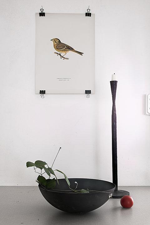 tavla fågel sideboard