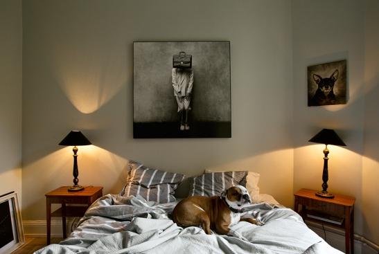 Tavla sängkammare hund konst Bastugatan
