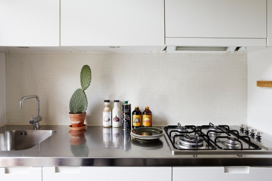 Kök kaktus kokplatta