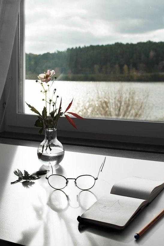 fönster utsikt sjö glasögon blommor