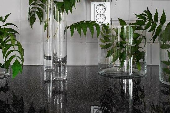 Bänkskiva glas växt