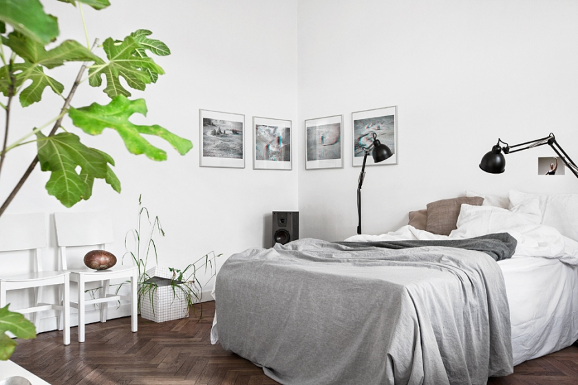 Säng växt konst sovrum