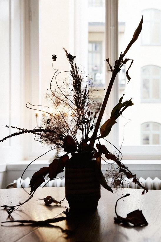blommor fönster skugga