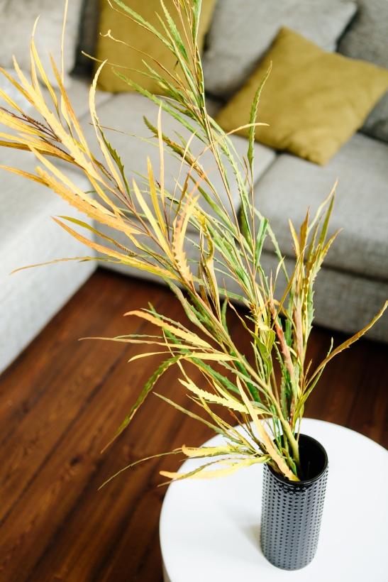 trägolv växt vardagsrum soffa