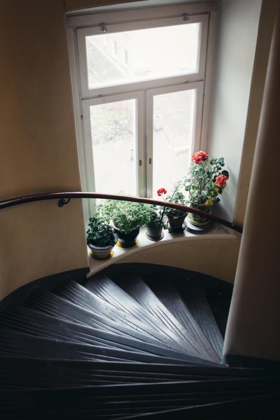 trappuppgång blommor
