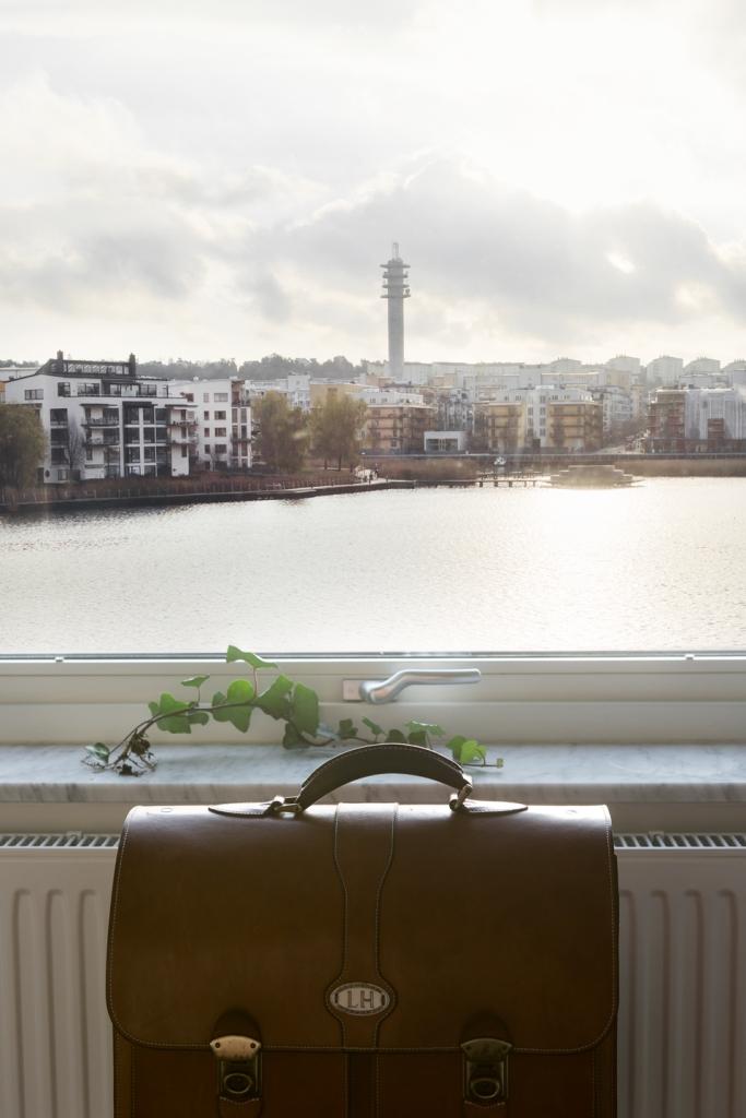 Utsikt väska fönster