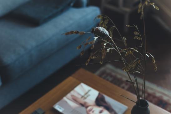 Soffa soffbord växt tidning