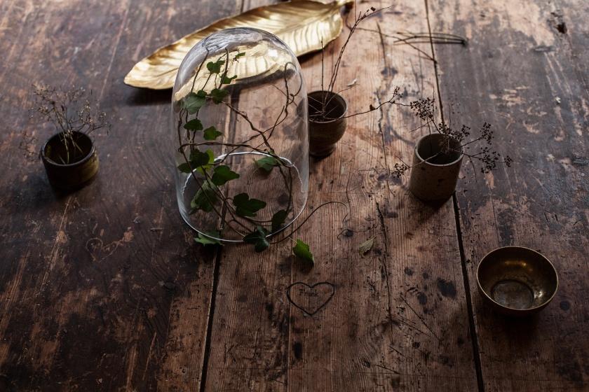 Träbord blomma glaskupa