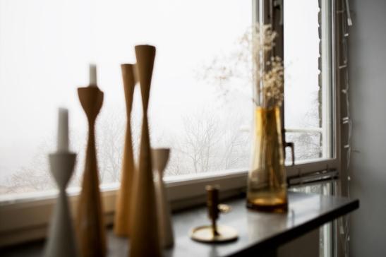 Fönster vasor växt