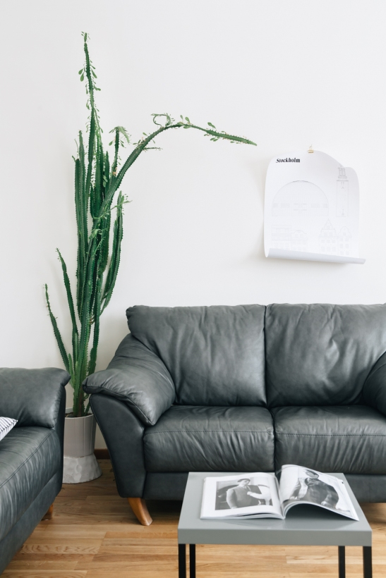 Soffa Affisch Studio Esinam växt
