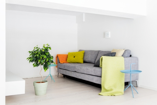 Soffa kuddar filt växt