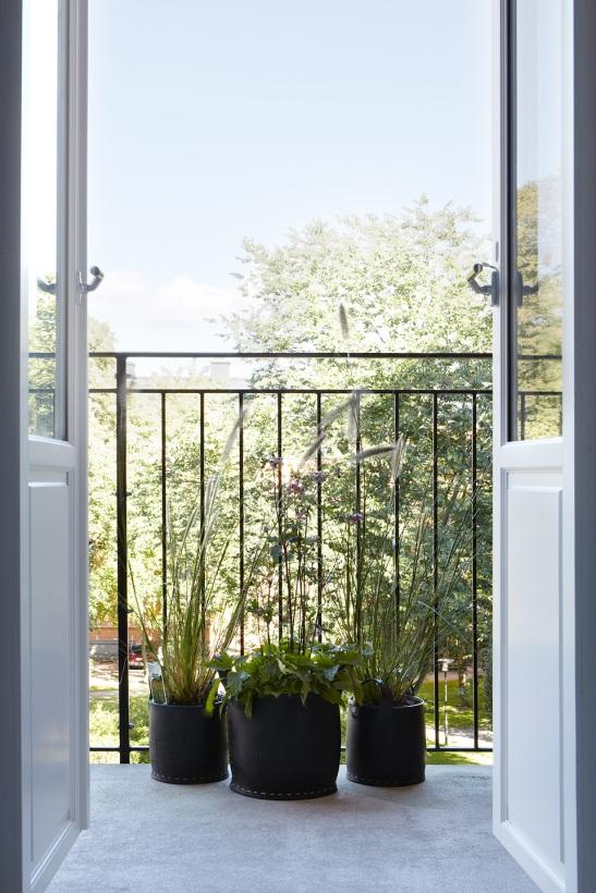 Balkong utsikt natur växter sommar