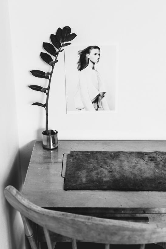skrivbord trä fotokonst växt
