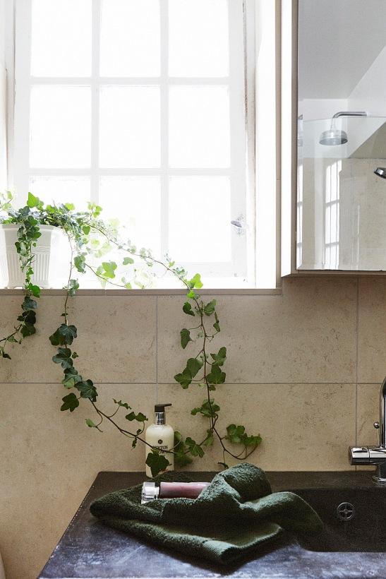 Badrum fönster klätterväxt