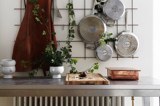 Kök kastrull klätterväxt