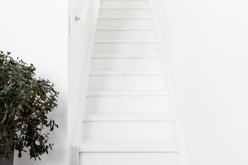 trappa träd vitt