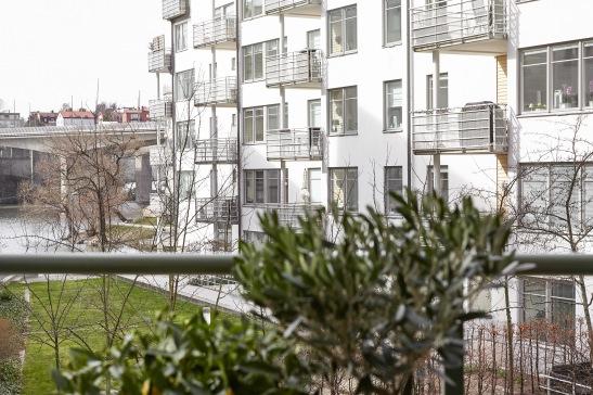 Lilla essingen balkong olivträd utsikt