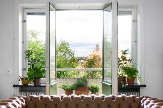 Lundagatan 36 d stockholm sofa chesterfield plants livingroom fantastic frank