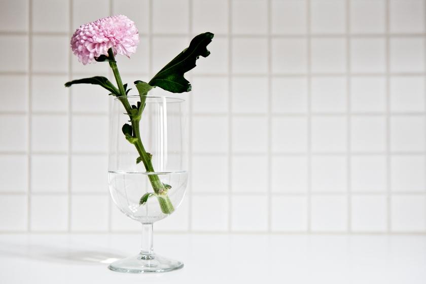 Vasastan kök solitär rosa blomma ölglas