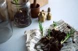 Anders reimers details spring onions brass virr varr fantastic frank