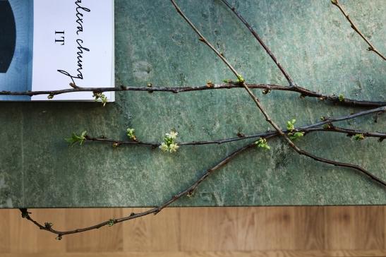 therese_winberg_photography_stylist_emma_wallmen marmor gren spring vår bok fantasic frank