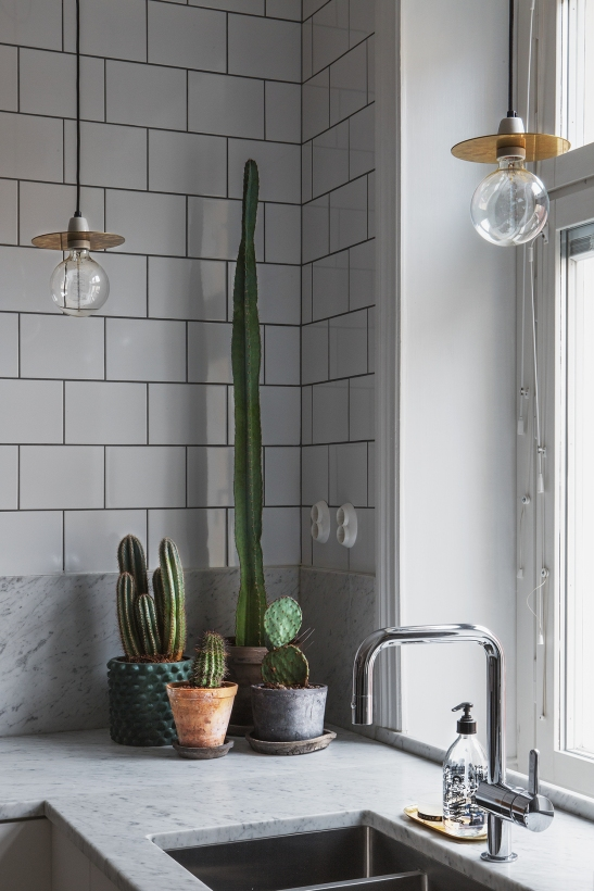 bohusgatan cactus kitcjen brass light bulbs marble fantastic frank therese_winberg_photography_stylist_emma_wallmen