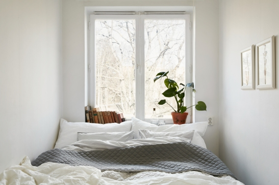Sockenvägen fantastic frank Joakim Johansson Emma wallmén bedroom books plant window